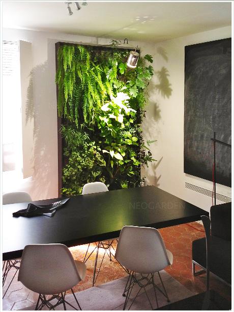 mur-vegetal-bureaux